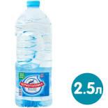 Вода Черноголовка для детского питания артезианская негазированная 2.5л