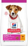 Сухой корм для щенков Hills Science Plan Puppy для мелких пород с курицей 300г
